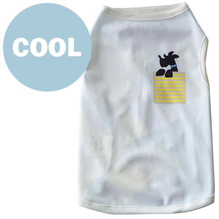 wear cool x cool pocket f dog blue